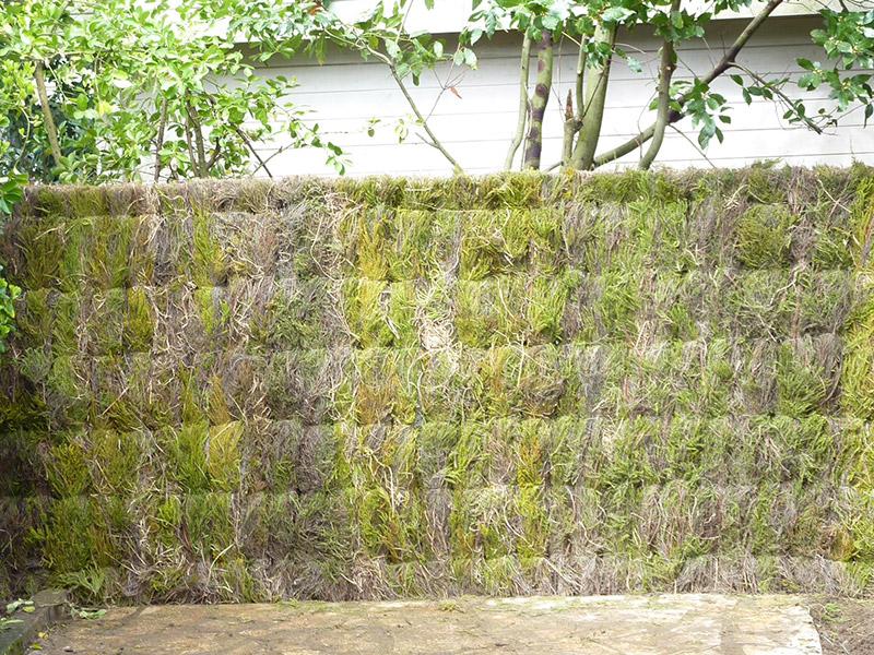 cloture de jardin pas cher cloture jardin pas cher lovely. Black Bedroom Furniture Sets. Home Design Ideas