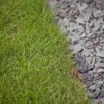pelouse et ardoise